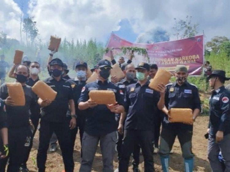 Polisi amankan 284 kilogram dan 10 ribu pohon ganja /Ist