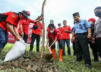 Ketua DPC PDIP Surabaya saat menenam pohon/ist